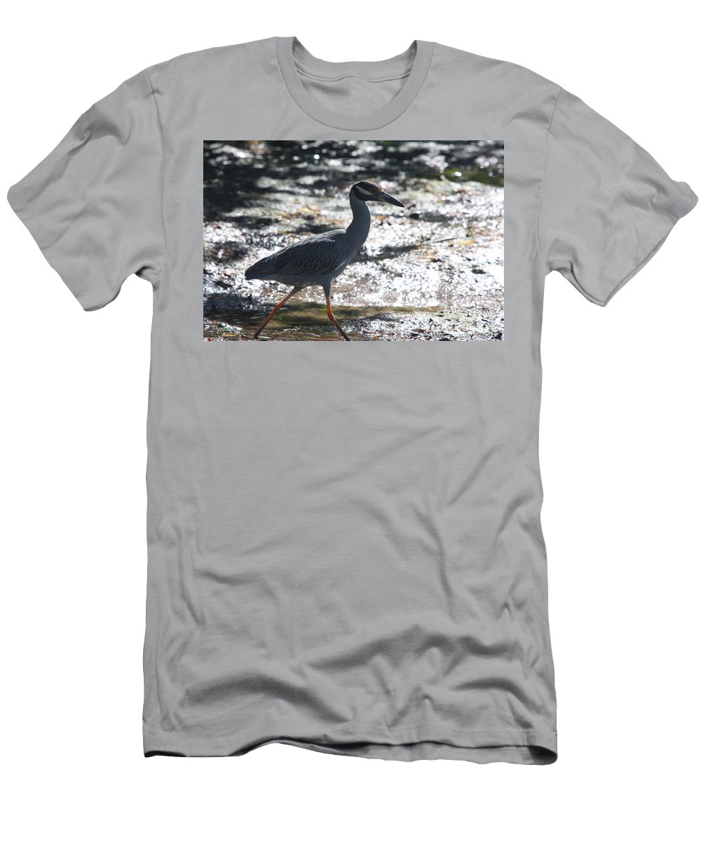 Night-heron Men's T-Shirt (Athletic Fit) featuring the photograph Black-crowned Night-heron by Christiane Schulze Art And Photography