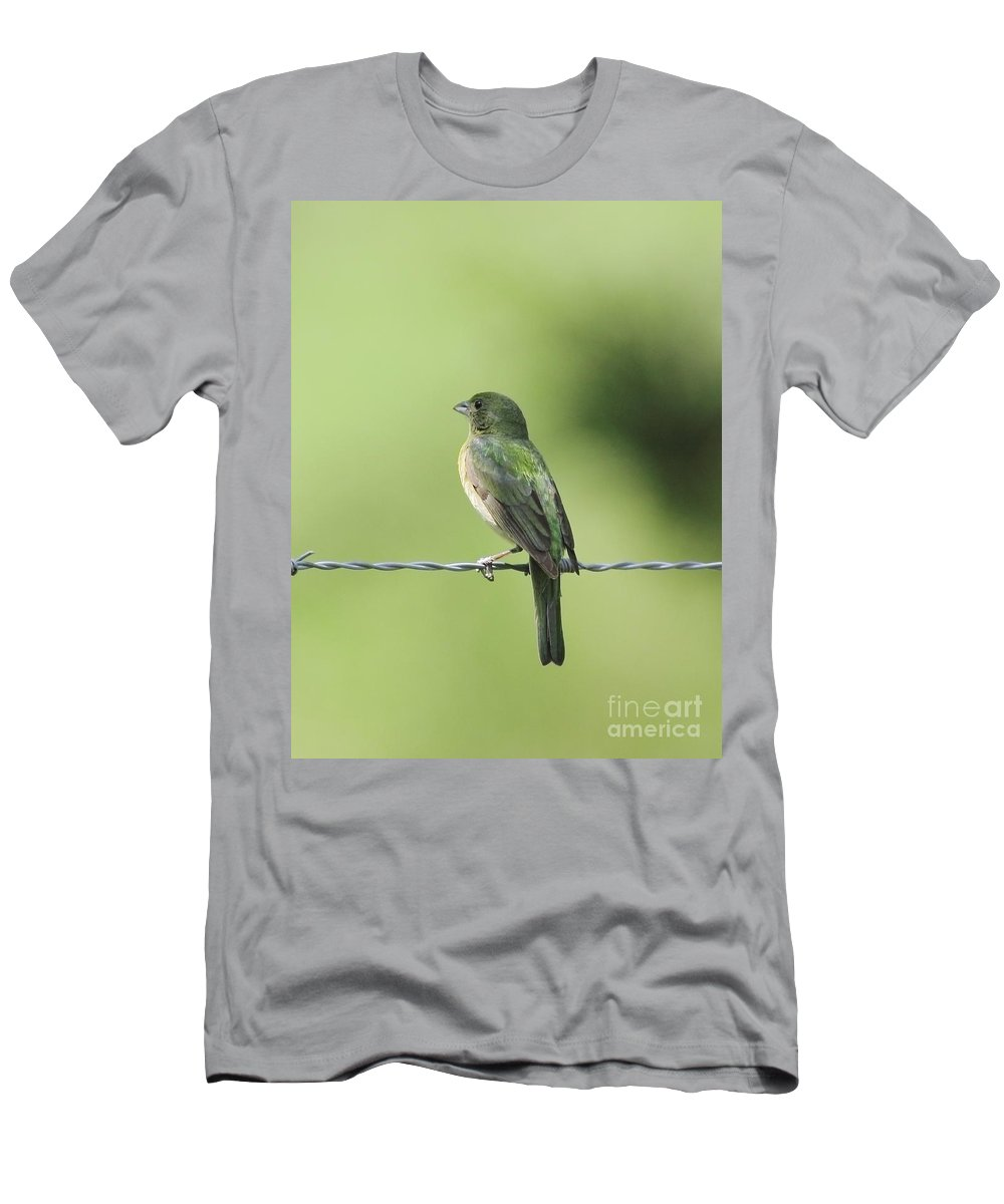 Animal Men's T-Shirt (Athletic Fit) featuring the photograph Female Painted Bunting by Robert Frederick