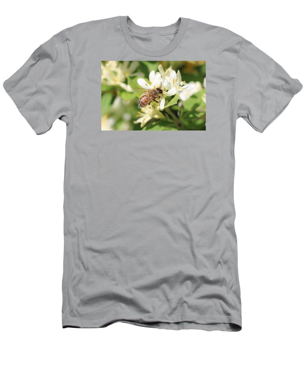 Honeybee Men's T-Shirt (Athletic Fit) featuring the photograph Honeybee And Honeysuckle by Lucinda VanVleck