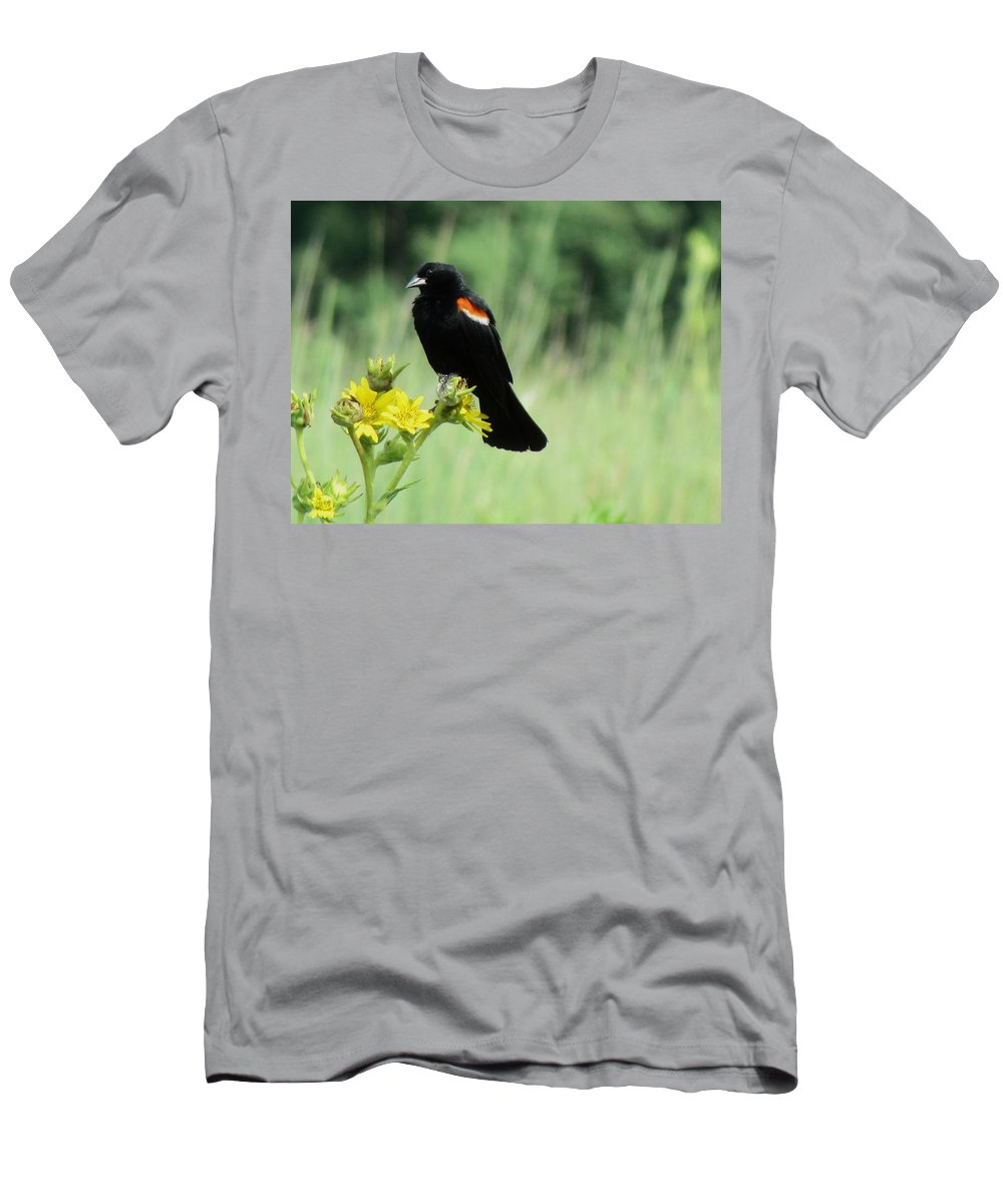 Red-winged Blackbird Men's T-Shirt (Athletic Fit) featuring the photograph Red-winged Blackbird by Eric Noa