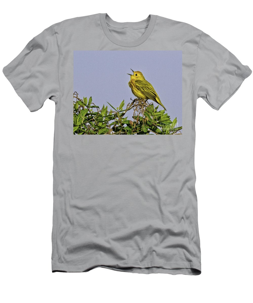 Songbird Men's T-Shirt (Athletic Fit) featuring the photograph Singing by Jan Killian
