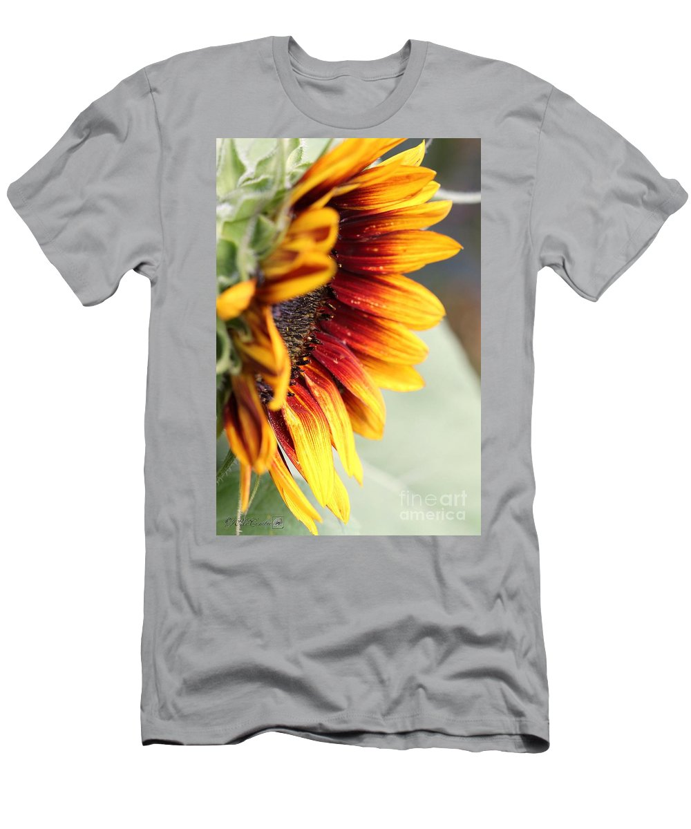 Mccombie Men's T-Shirt (Athletic Fit) featuring the photograph Sunflower Named The Joker by J McCombie