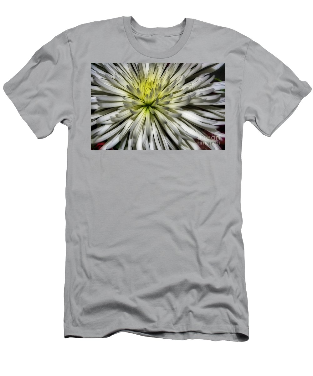 Pictures Of Flowers Men's T-Shirt (Athletic Fit) featuring the photograph White by Skip Willits