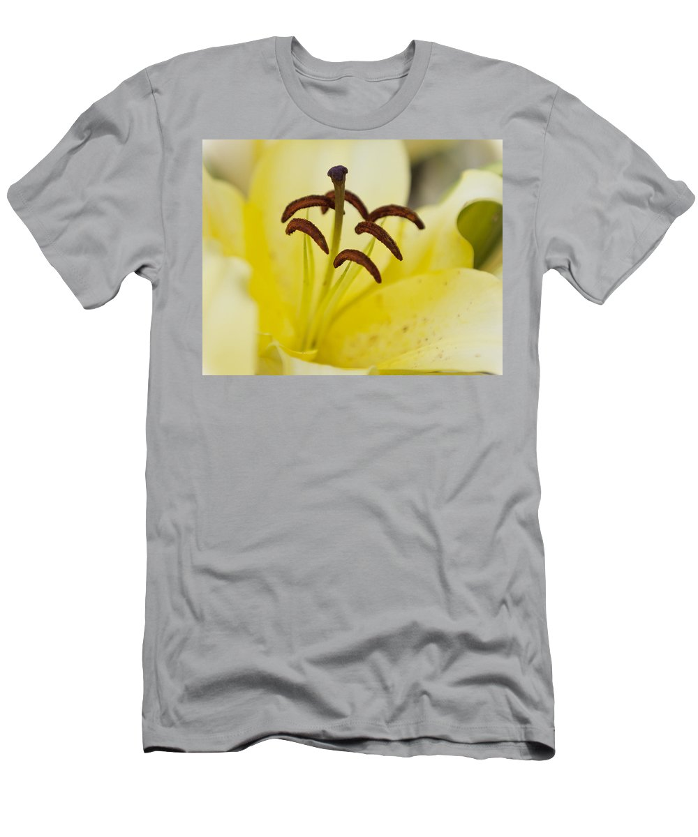 Plant Men's T-Shirt (Athletic Fit) featuring the photograph Yellow Lily by Maj Seda
