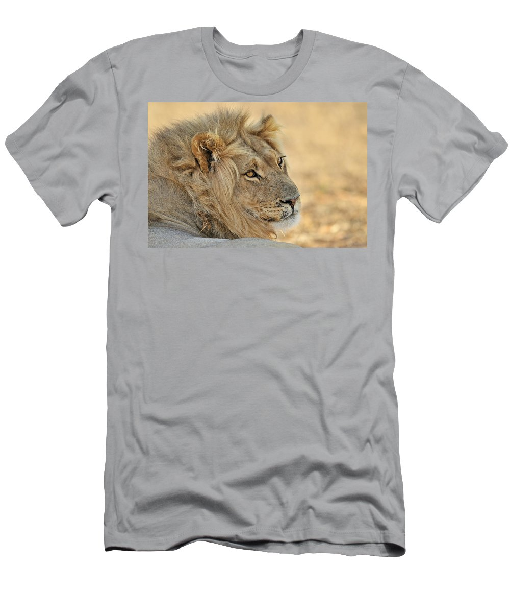 African Men's T-Shirt (Athletic Fit) featuring the photograph 120118p103 by Arterra Picture Library