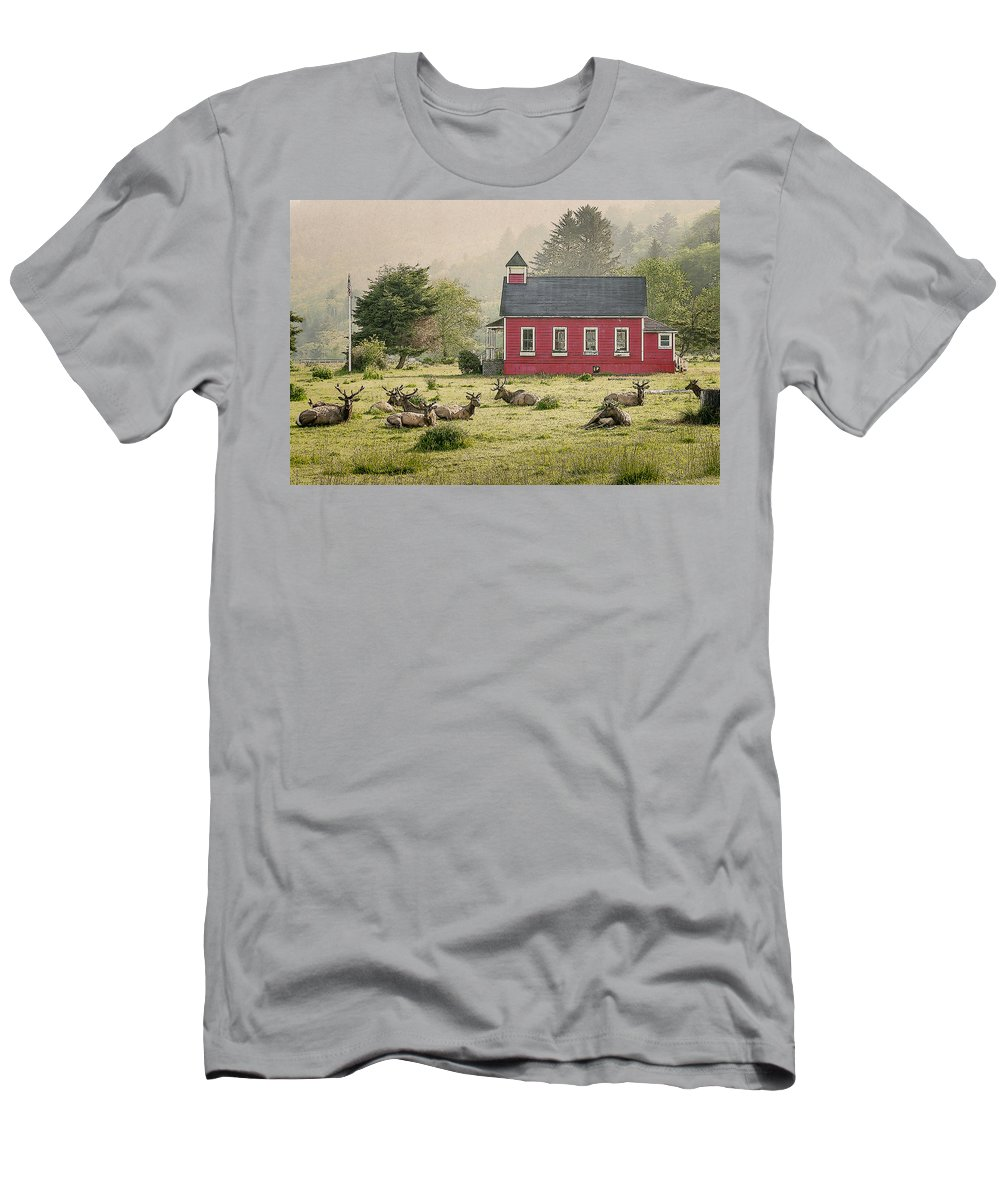 Cervus Canadensis Men's T-Shirt (Athletic Fit) featuring the photograph Elk In The School Yard by John Trax