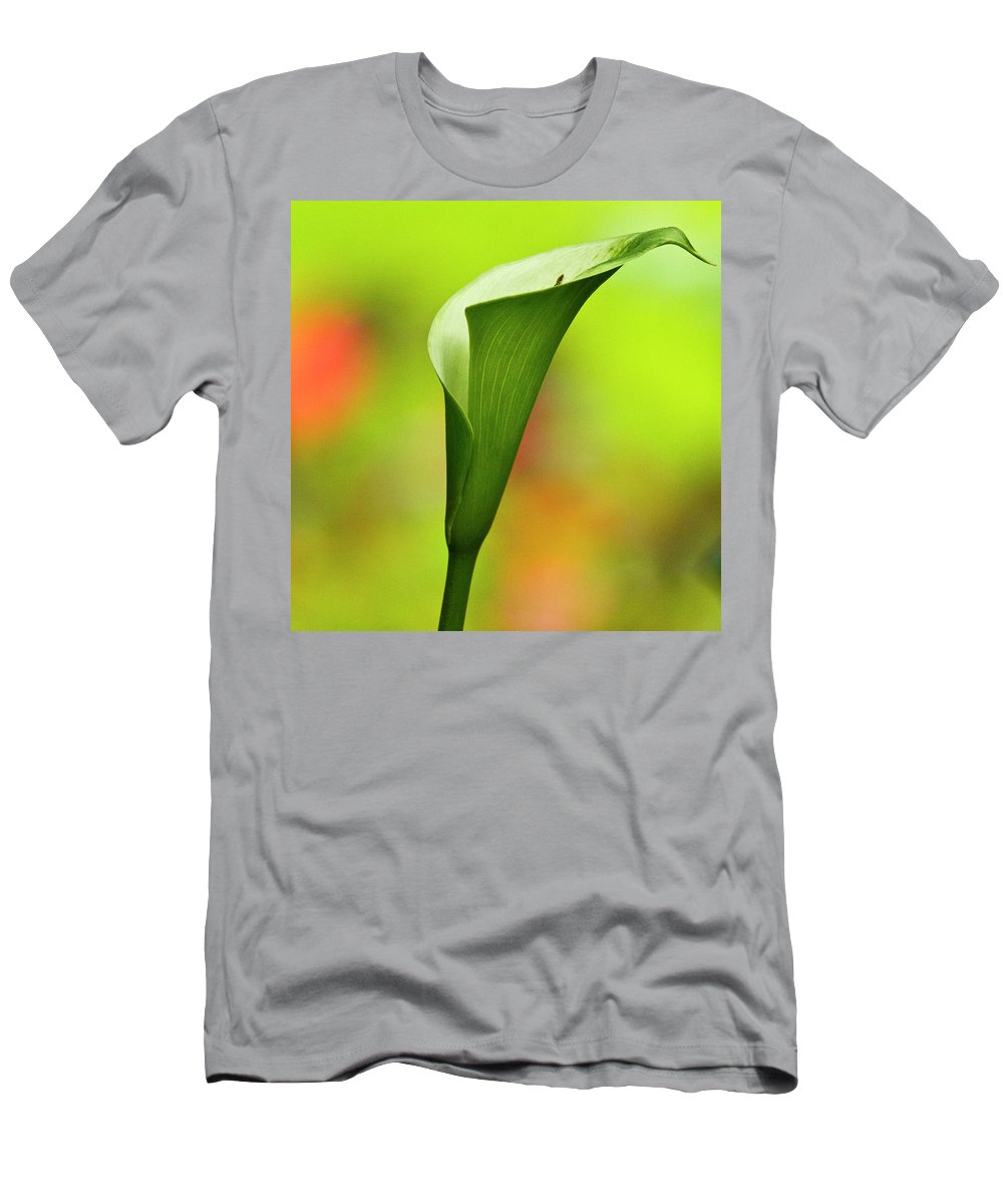 Calla Men's T-Shirt (Athletic Fit) featuring the photograph Green Calla Lily by Heiko Koehrer-Wagner