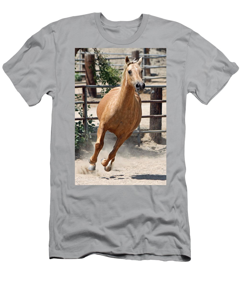 Horse Men's T-Shirt (Athletic Fit) featuring the photograph Horse On The Run II by Shoal Hollingsworth