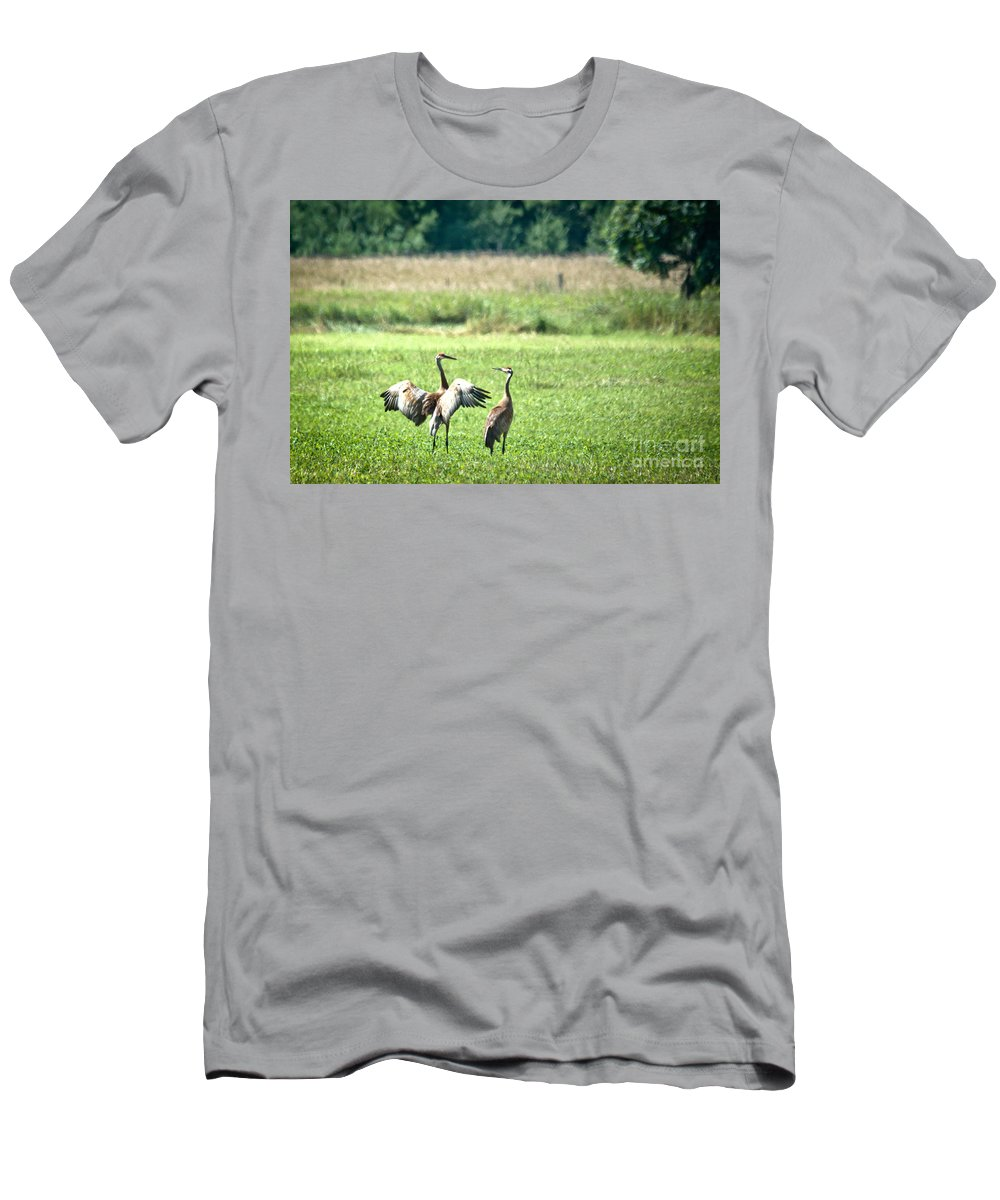 Sandhill Cranes Men's T-Shirt (Athletic Fit) featuring the photograph It Was This Big by Cheryl Baxter