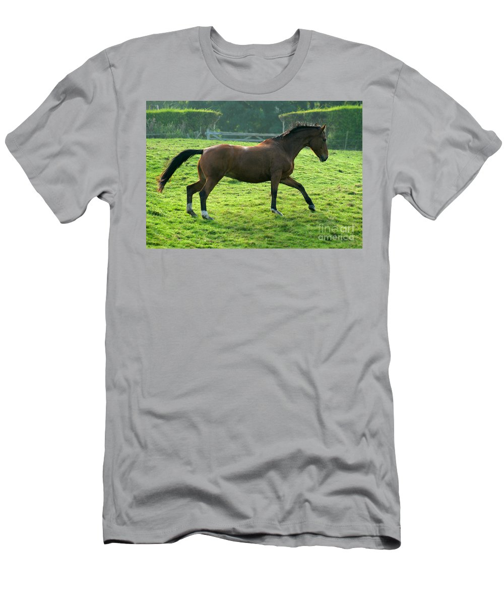 Horse Men's T-Shirt (Athletic Fit) featuring the photograph Bay Horse by Angel Ciesniarska