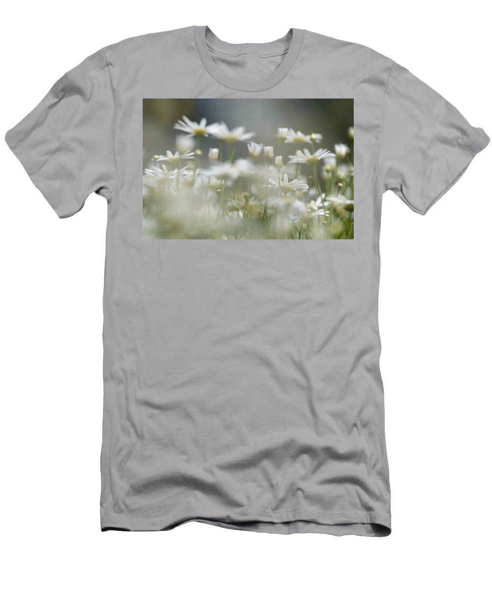 Daisy Wild Flower Summer Men's T-Shirt (Athletic Fit) featuring the photograph Daisies by Michael Goyberg
