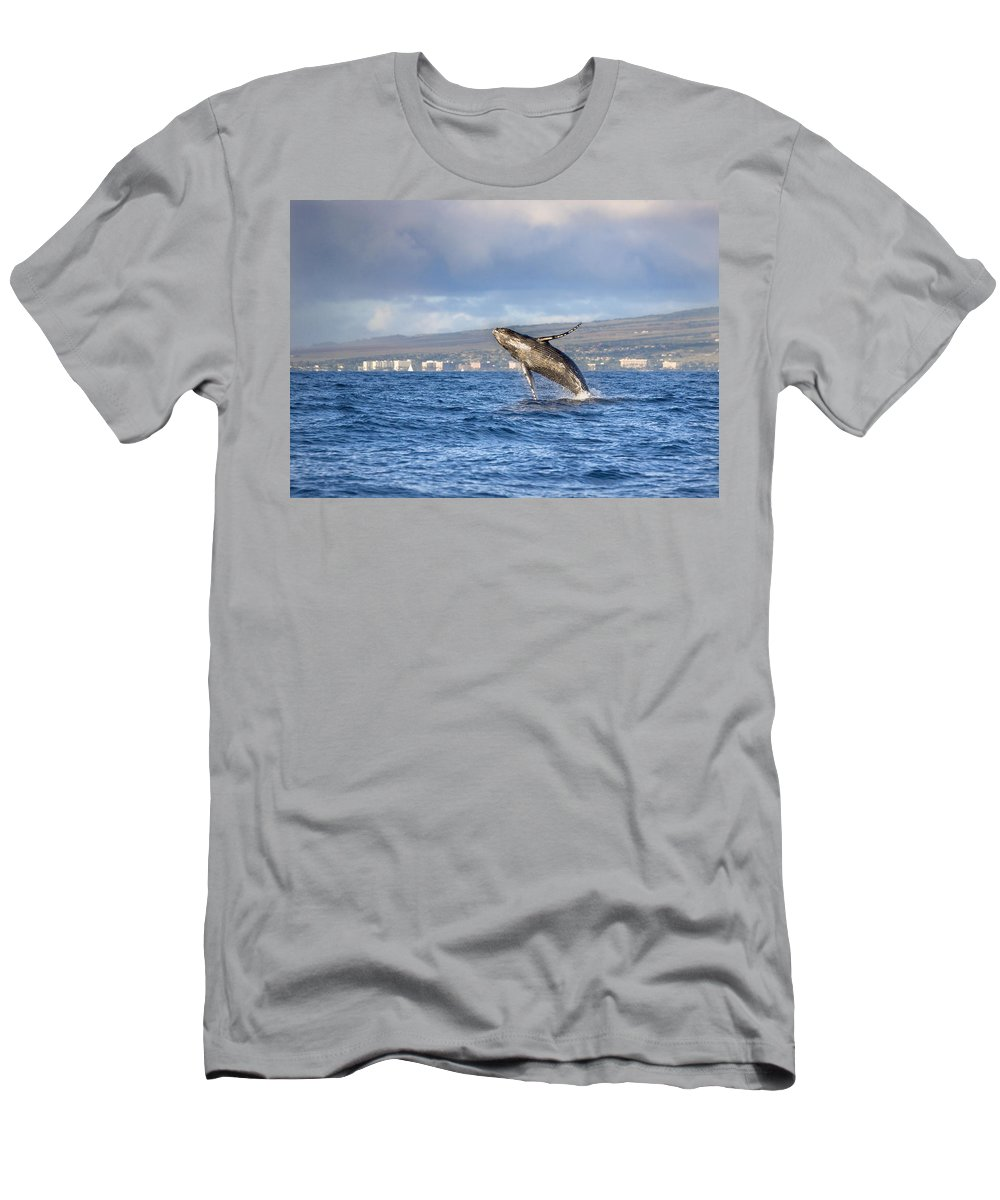 Above Men's T-Shirt (Athletic Fit) featuring the photograph Humpback Whale by M Swiet Productions