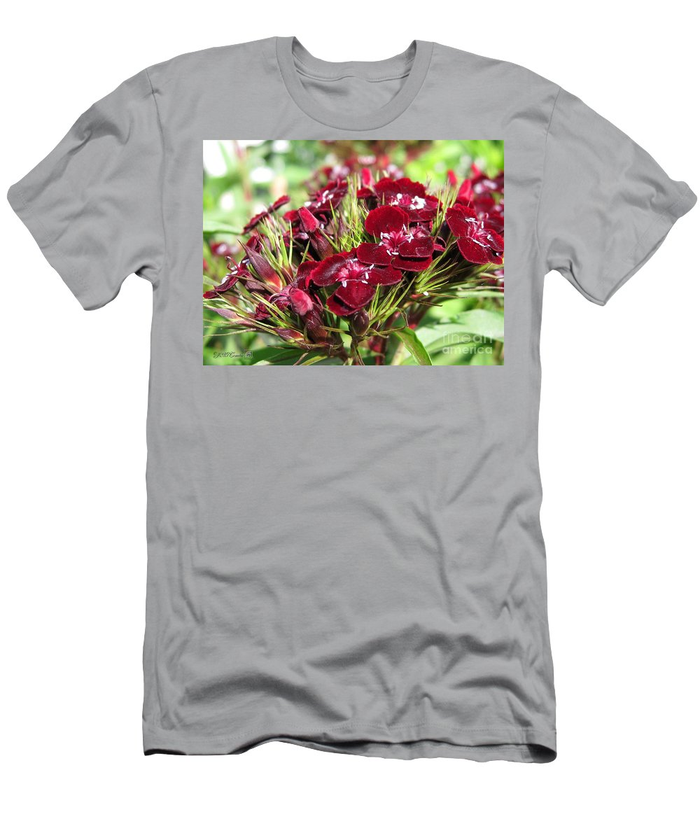 Mccombie Men's T-Shirt (Athletic Fit) featuring the photograph Sweet William Named Sooty by J McCombie