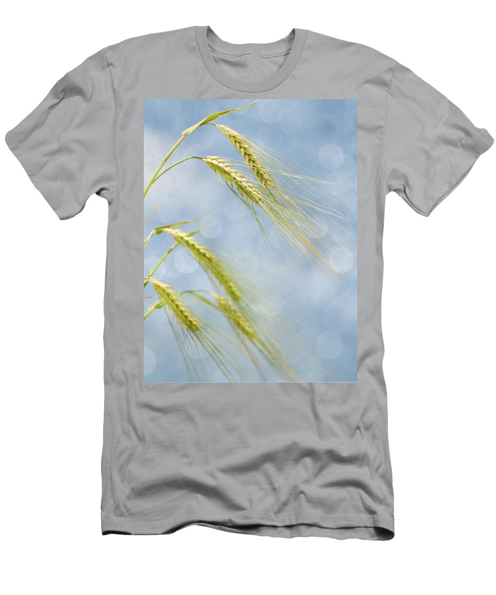 Wheat Men's T-Shirt (Athletic Fit) featuring the photograph Wheat by TouTouke A Y