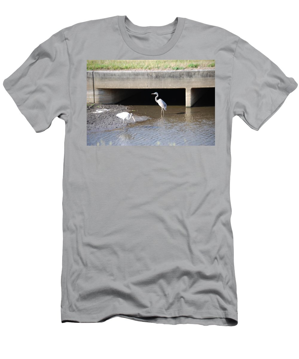 Feeding In The Ditch. Florida Men's T-Shirt (Athletic Fit) featuring the photograph Great White Heron by Robert Floyd
