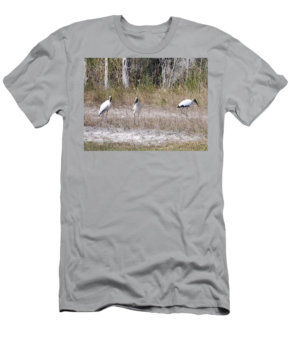 You Guys Keep A Look Out. Men's T-Shirt (Athletic Fit) featuring the photograph Wood Storks by Robert Floyd
