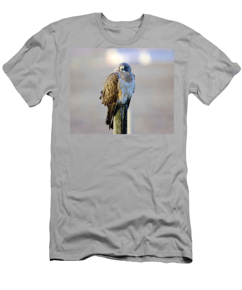 Fowl Men's T-Shirt (Athletic Fit) featuring the photograph A Hawk On A Fence Post by Jeff Swan