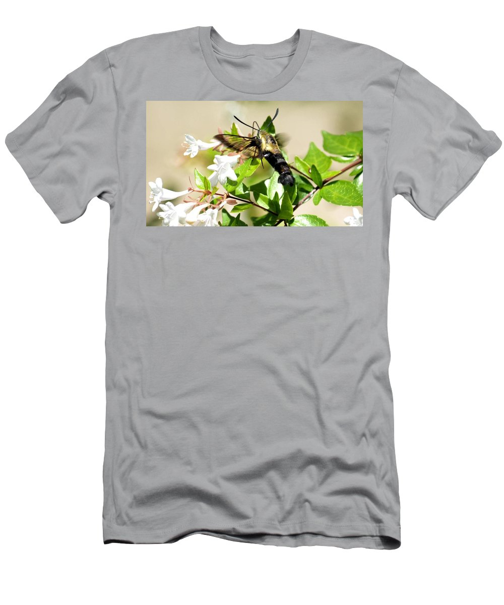 Sphinx Men's T-Shirt (Athletic Fit) featuring the photograph A Sphinx's Pollination by Maria Urso