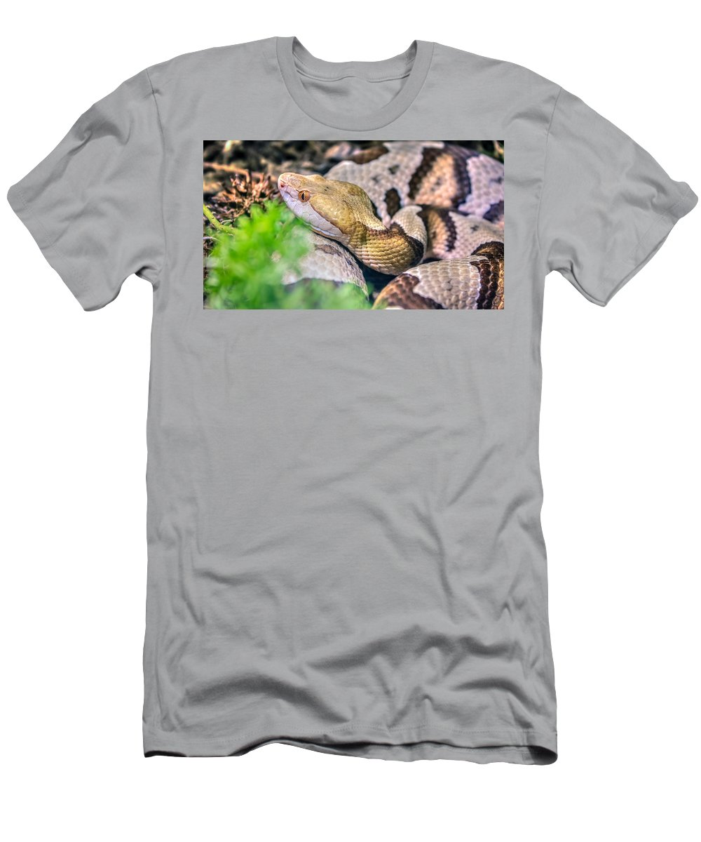 Agkistrodon Men's T-Shirt (Athletic Fit) featuring the photograph Agkistrodon Contortrix by Rob Sellers