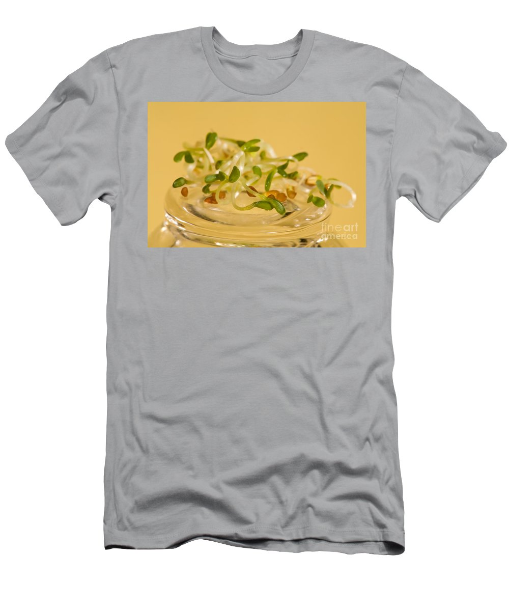 Sprouts Men's T-Shirt (Athletic Fit) featuring the photograph Alfalfa by Iris Richardson
