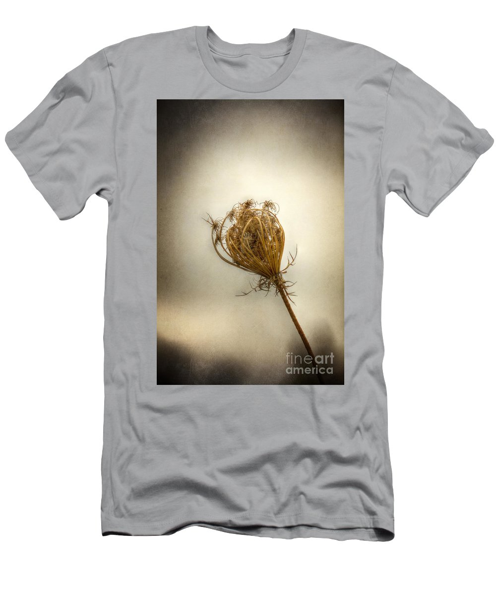 Queen Annes Lace; Weed; Nature; Dead; Death; Dry; Dried; One; Sole; Alone; Brown; Flower; Moody; Plant; Single; Stem; Carrot Weed; Stalk Men's T-Shirt (Athletic Fit) featuring the photograph Amongst The Living by Margie Hurwich