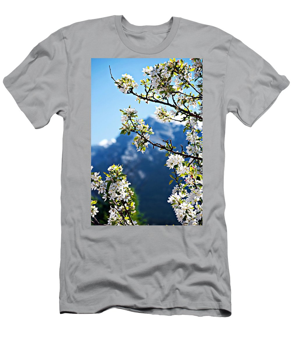 Apple Men's T-Shirt (Athletic Fit) featuring the photograph Apple Blossoms Frame The Rockies by Lisa Knechtel