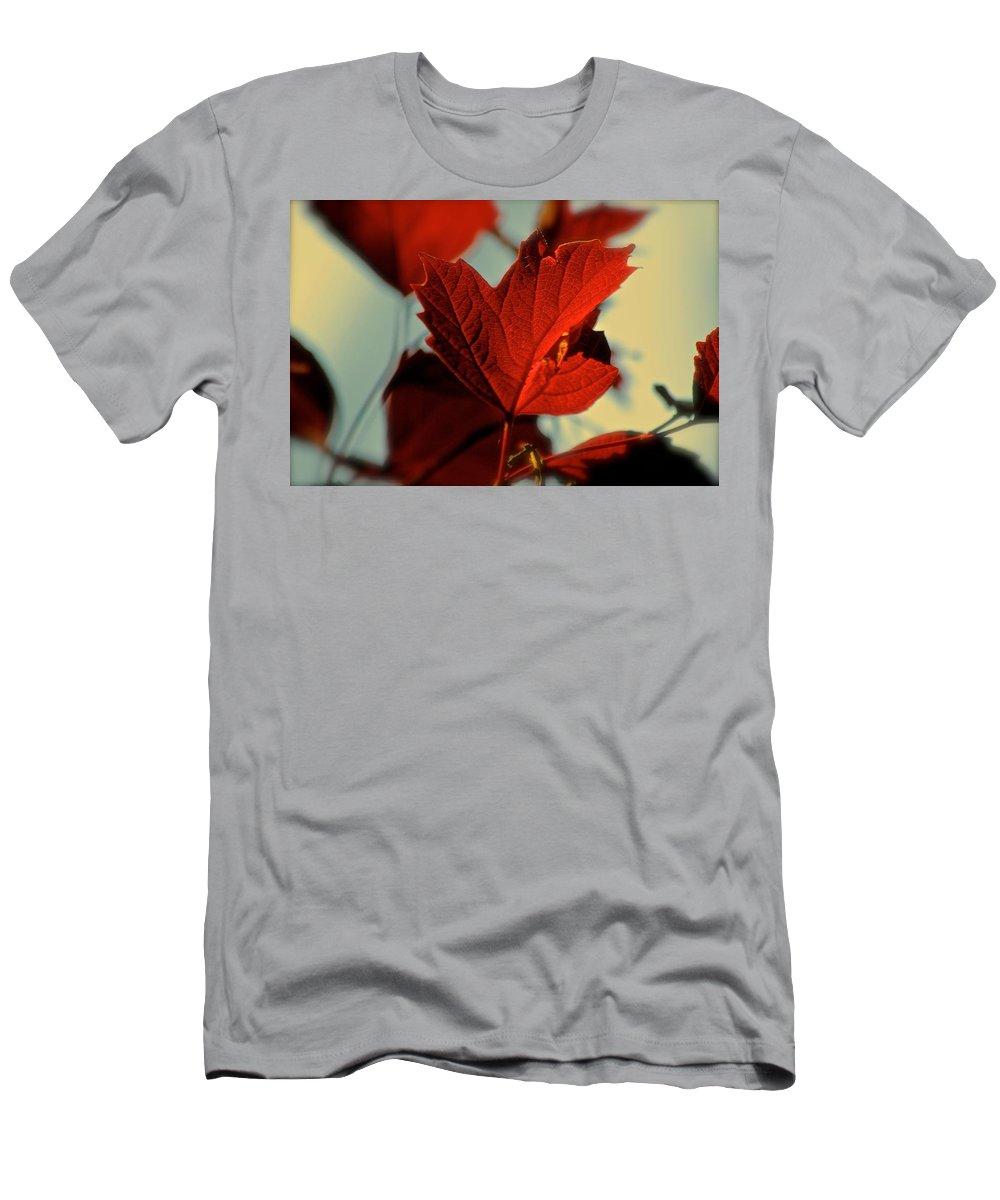 Nature Men's T-Shirt (Athletic Fit) featuring the photograph Autumn Leaf by Debbie Nobile