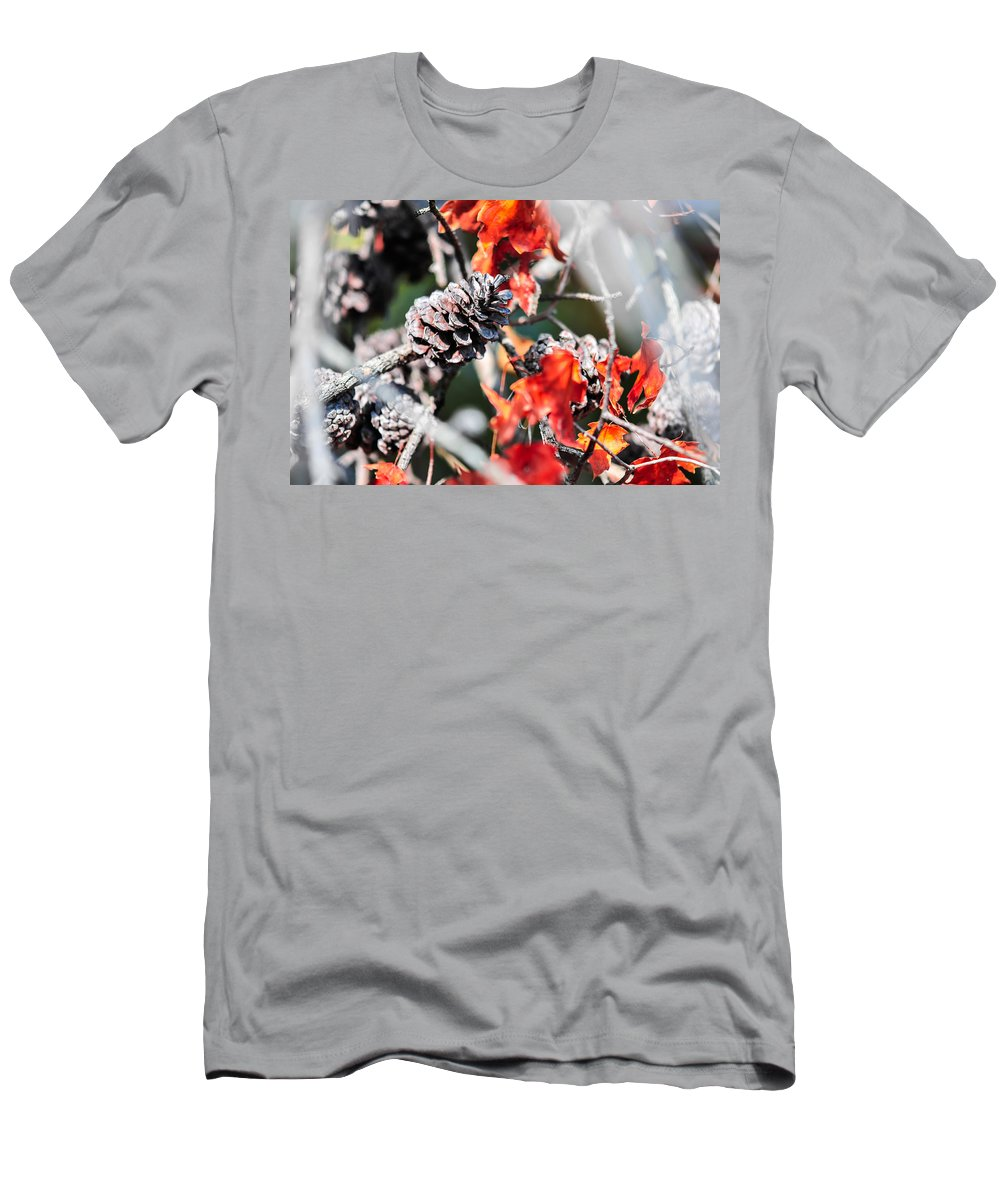 And Pinecone Men's T-Shirt (Athletic Fit) featuring the photograph Autumn Leaves And Pinecone Background by Alex Grichenko