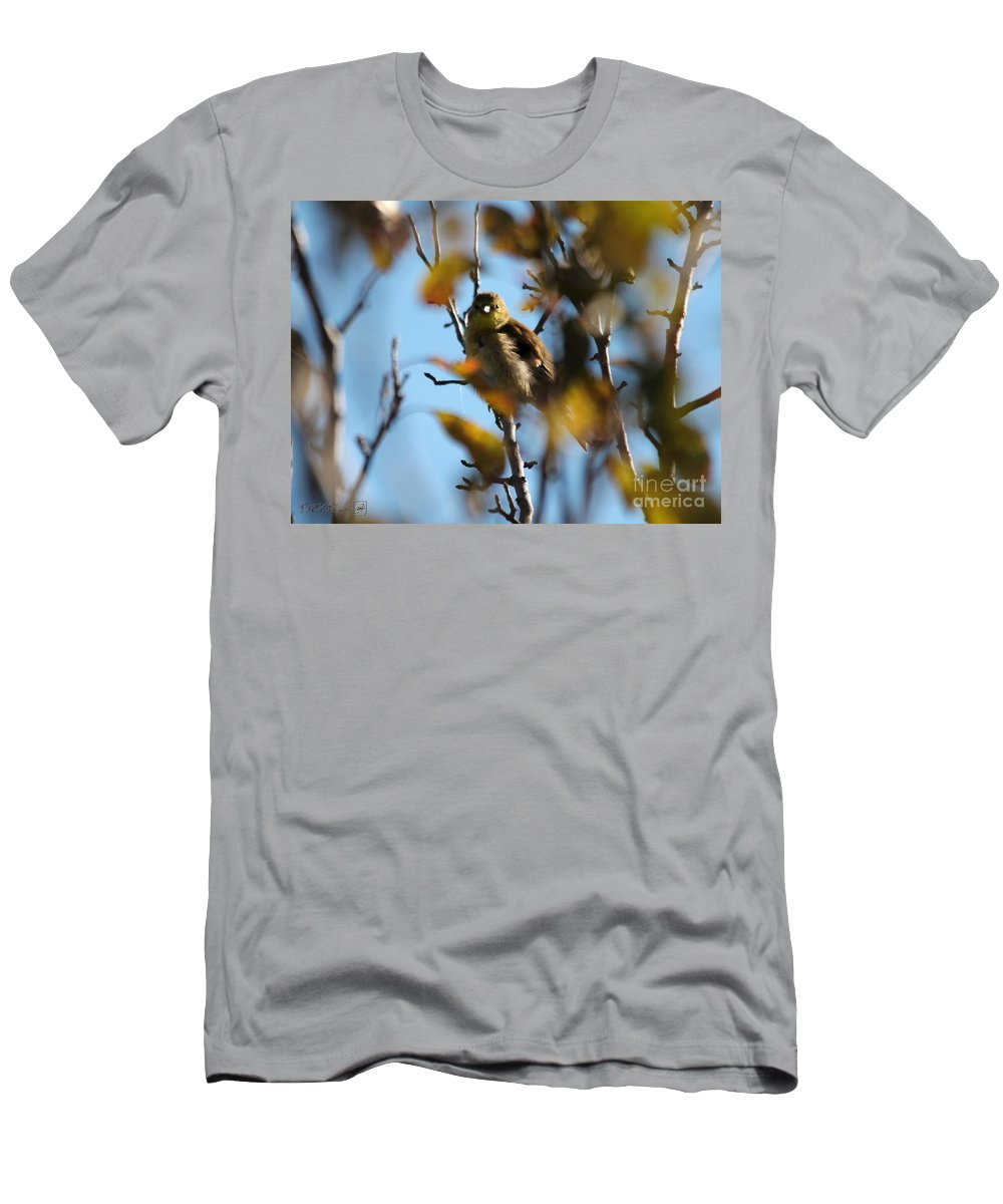 American Goldfinch Men's T-Shirt (Athletic Fit) featuring the photograph Baby American Goldfinch Learning To Fly by J McCombie