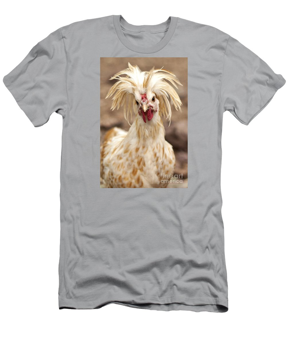 #chicken Men's T-Shirt (Athletic Fit) featuring the photograph Bad Hair Day by K D Graves