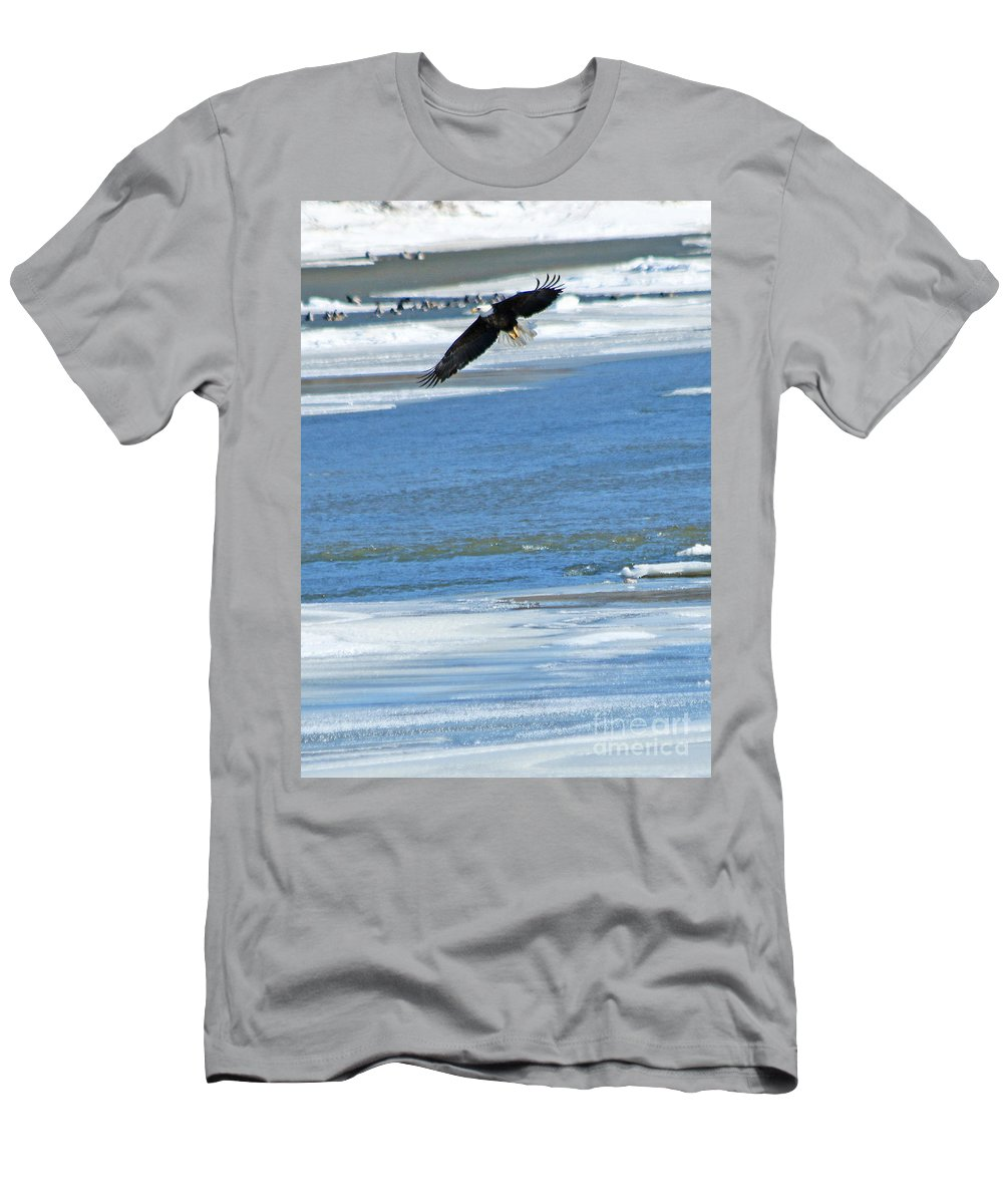 Bald Eagle Men's T-Shirt (Athletic Fit) featuring the photograph Bald Eagle 2832 by Jack Schultz