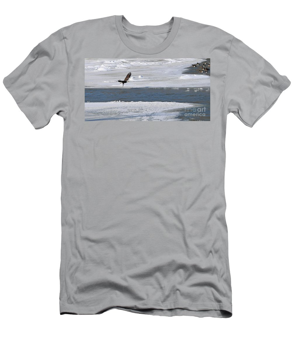 Bald Eagle Men's T-Shirt (Athletic Fit) featuring the photograph Bald Eagle With Fish 3655 by Jack Schultz