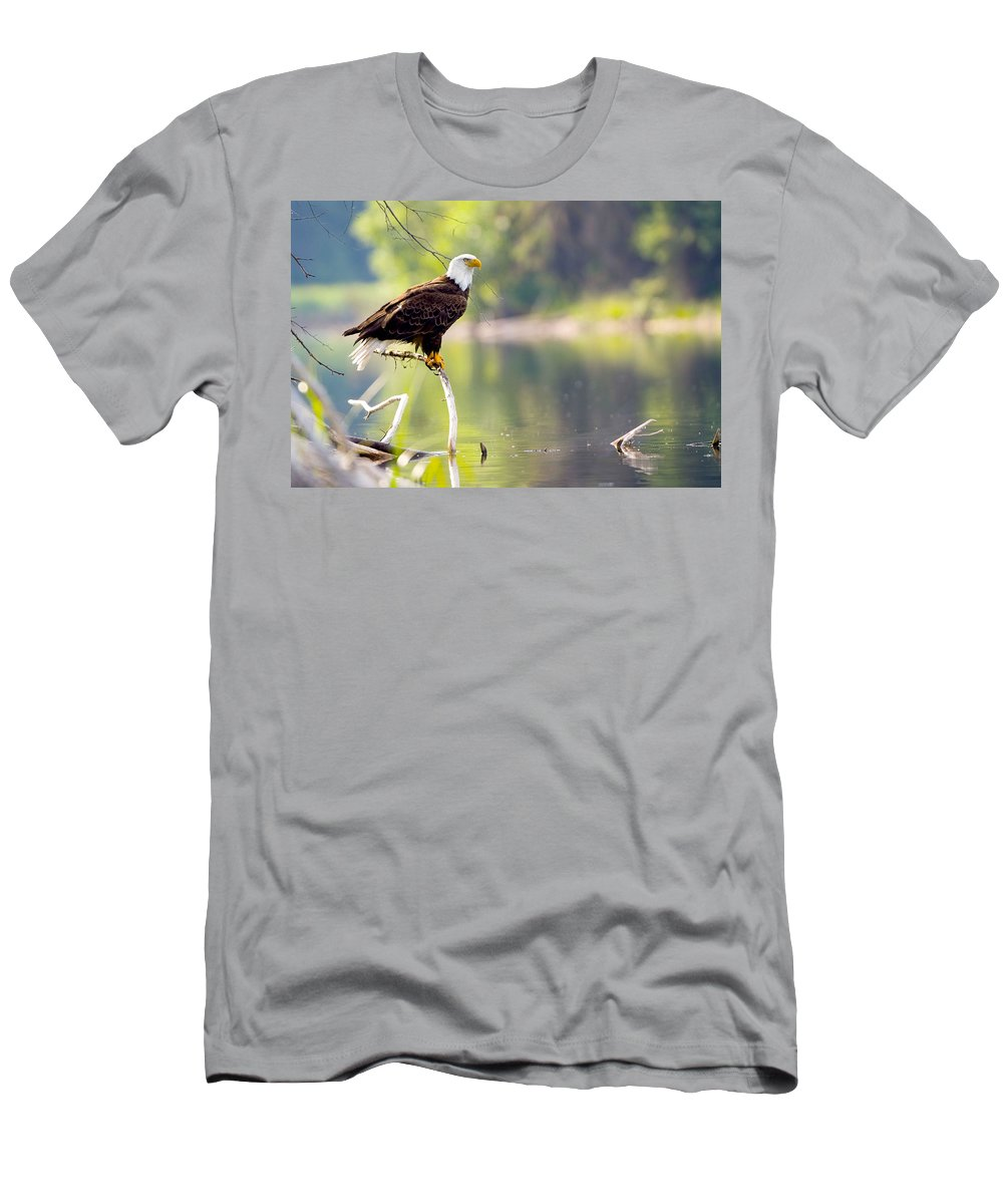 Acorn Woodpecker Men's T-Shirt (Athletic Fit) featuring the photograph Bath Time by Randy Giesbrecht