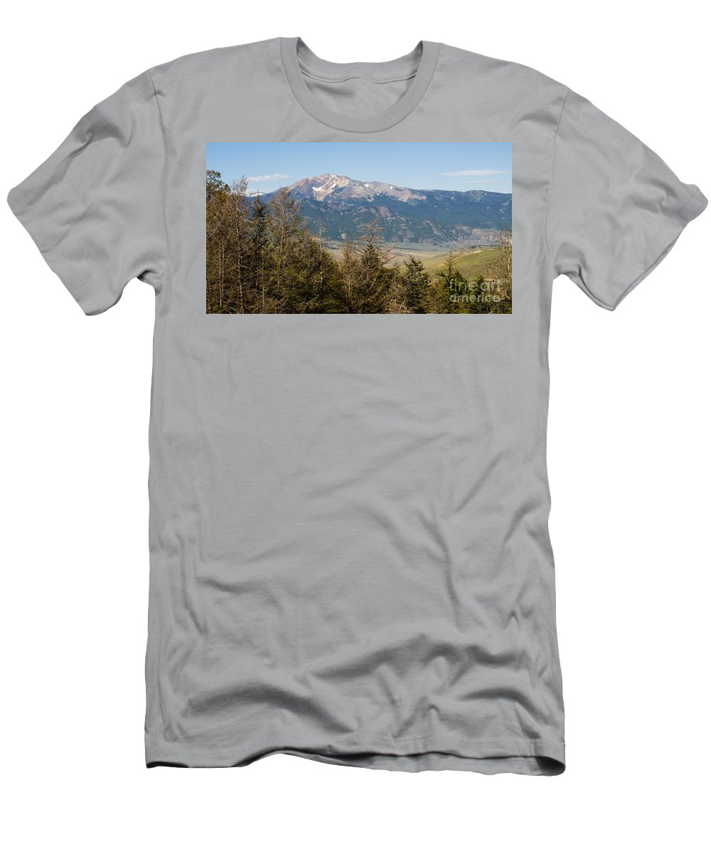 Montana Men's T-Shirt (Athletic Fit) featuring the photograph Euphorbia Marginata 12 Over The Trees by Tara Lynn