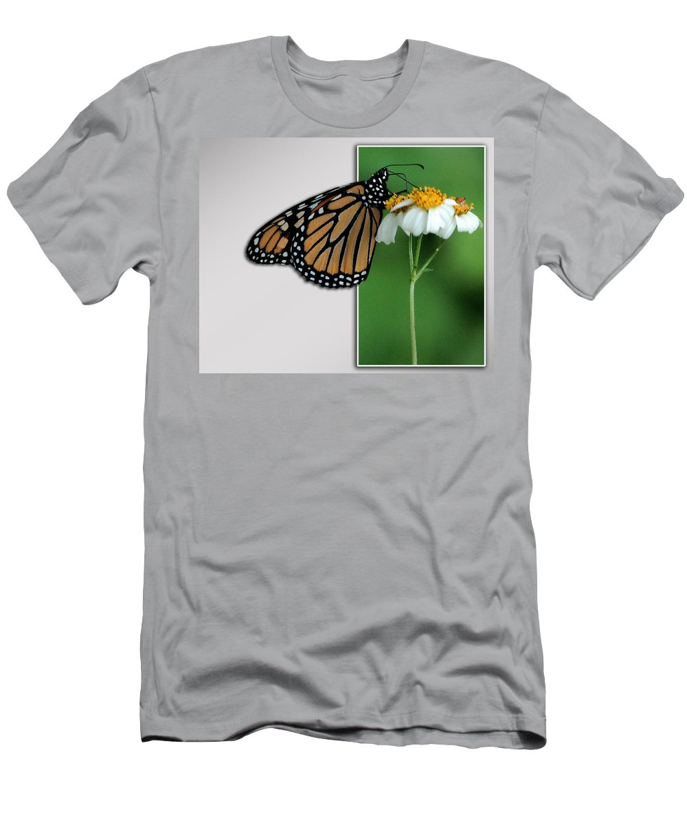 Butterfly Men's T-Shirt (Athletic Fit) featuring the photograph Blank Greeting Card 5 by Leticia Latocki