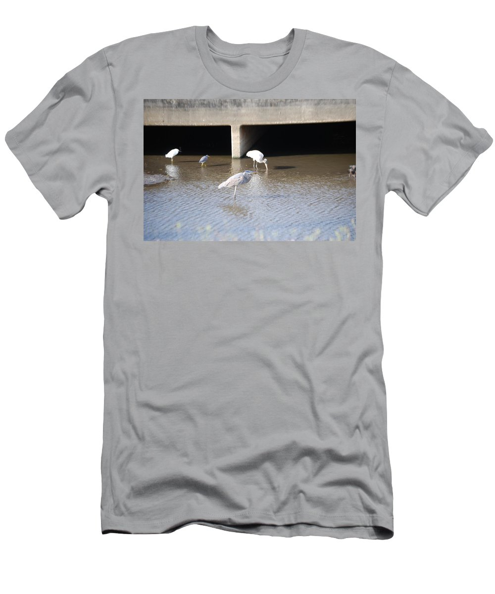 Group Feeding Hole Men's T-Shirt (Athletic Fit) featuring the photograph Blue Huron by Robert Floyd