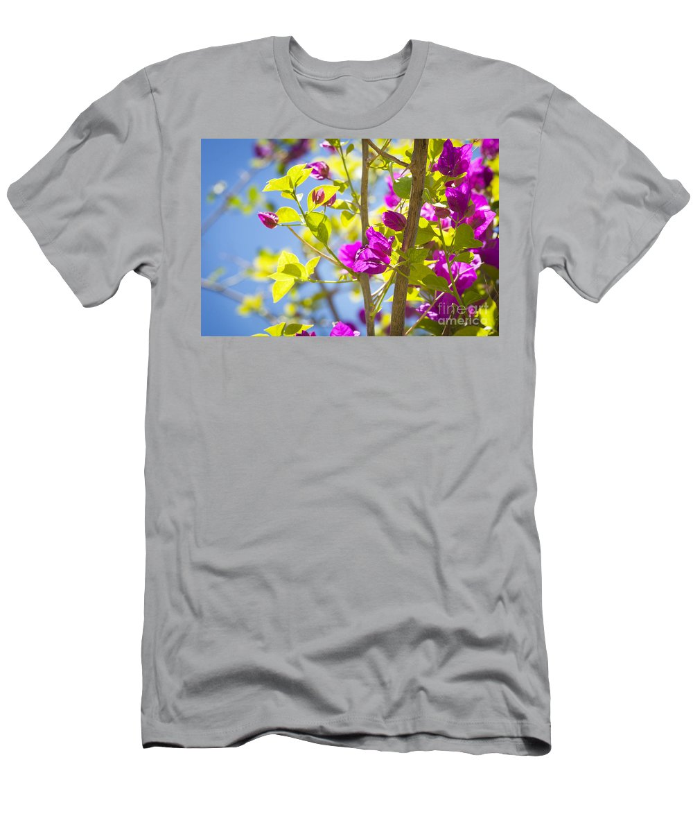 Tropical Men's T-Shirt (Athletic Fit) featuring the photograph Bougainvillea by Tim Hester
