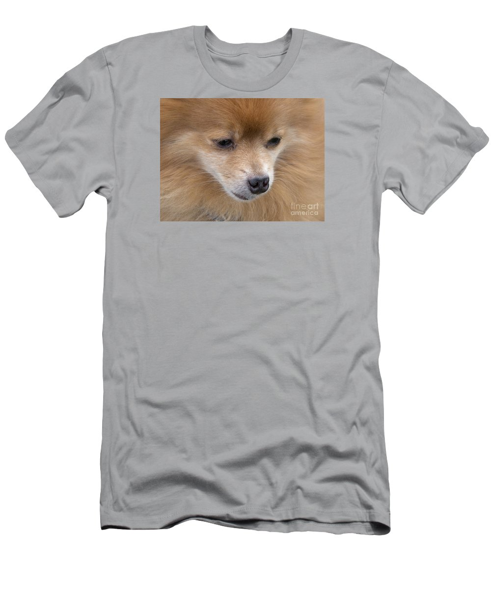 Dog Men's T-Shirt (Athletic Fit) featuring the photograph Buddy by Ann Horn