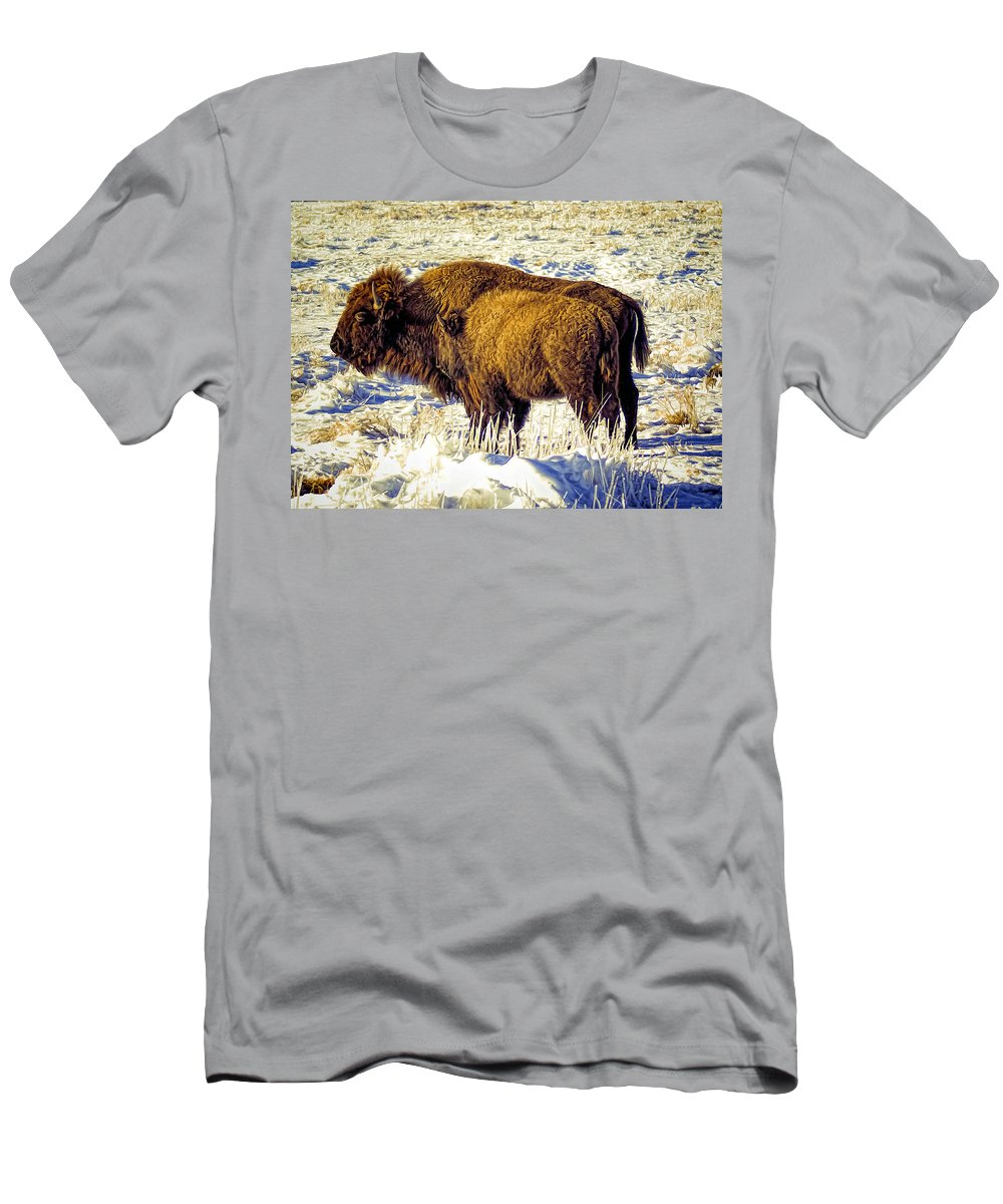Buffalo Men's T-Shirt (Athletic Fit) featuring the photograph Buffalo Painting by Alan Hutchins