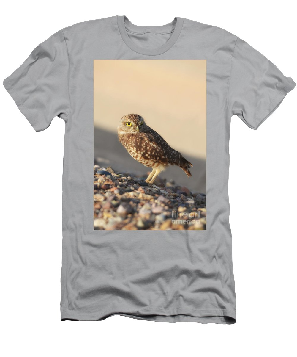 Owl Men's T-Shirt (Athletic Fit) featuring the photograph Burrowing Owl II by Donna Greene