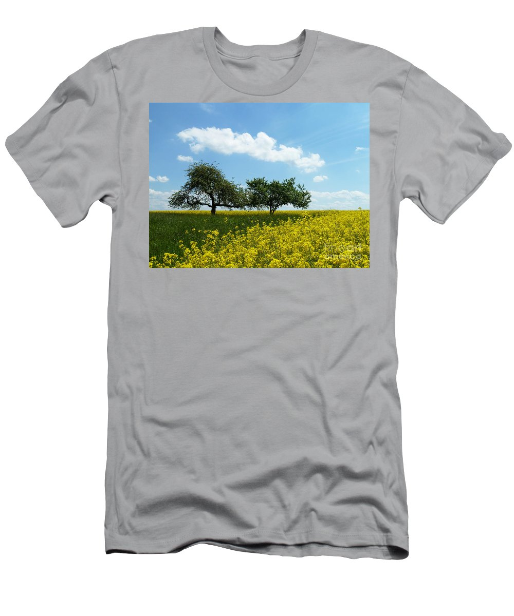 Rape Men's T-Shirt (Athletic Fit) featuring the painting Canola by Christine Huwer