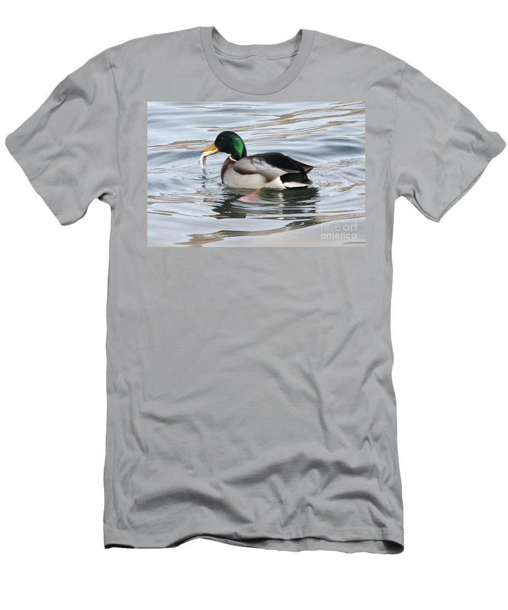 Mallard Men's T-Shirt (Athletic Fit) featuring the photograph Catch Of The Day by Lori Tordsen