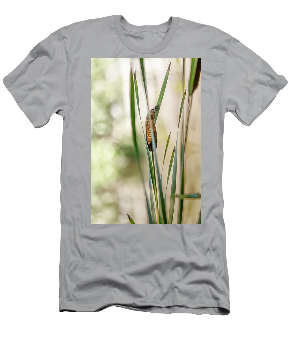 Cattails Men's T-Shirt (Athletic Fit) featuring the photograph Cattails by Susan Capuano
