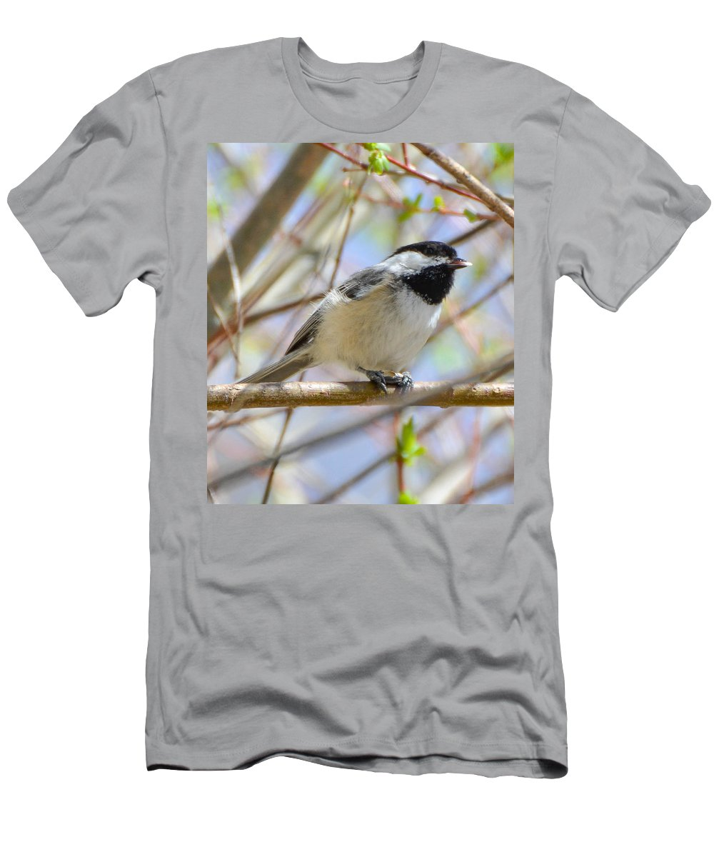 Chickadee Men's T-Shirt (Athletic Fit) featuring the photograph Chickadee Breakfast by Amy Porter