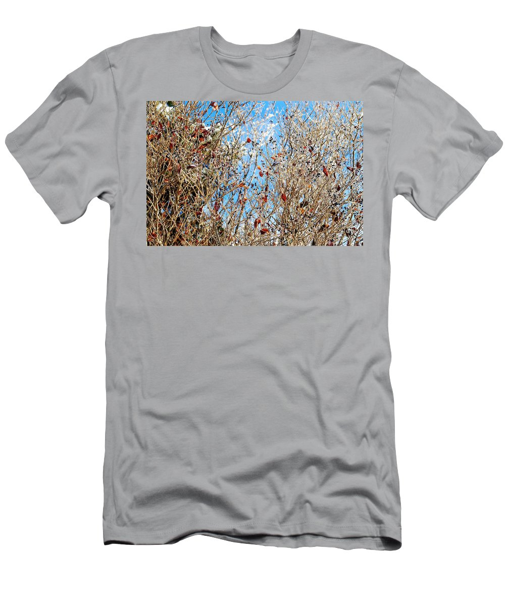 Winter Men's T-Shirt (Athletic Fit) featuring the photograph Colorful Winter Wonderland by Frozen in Time Fine Art Photography