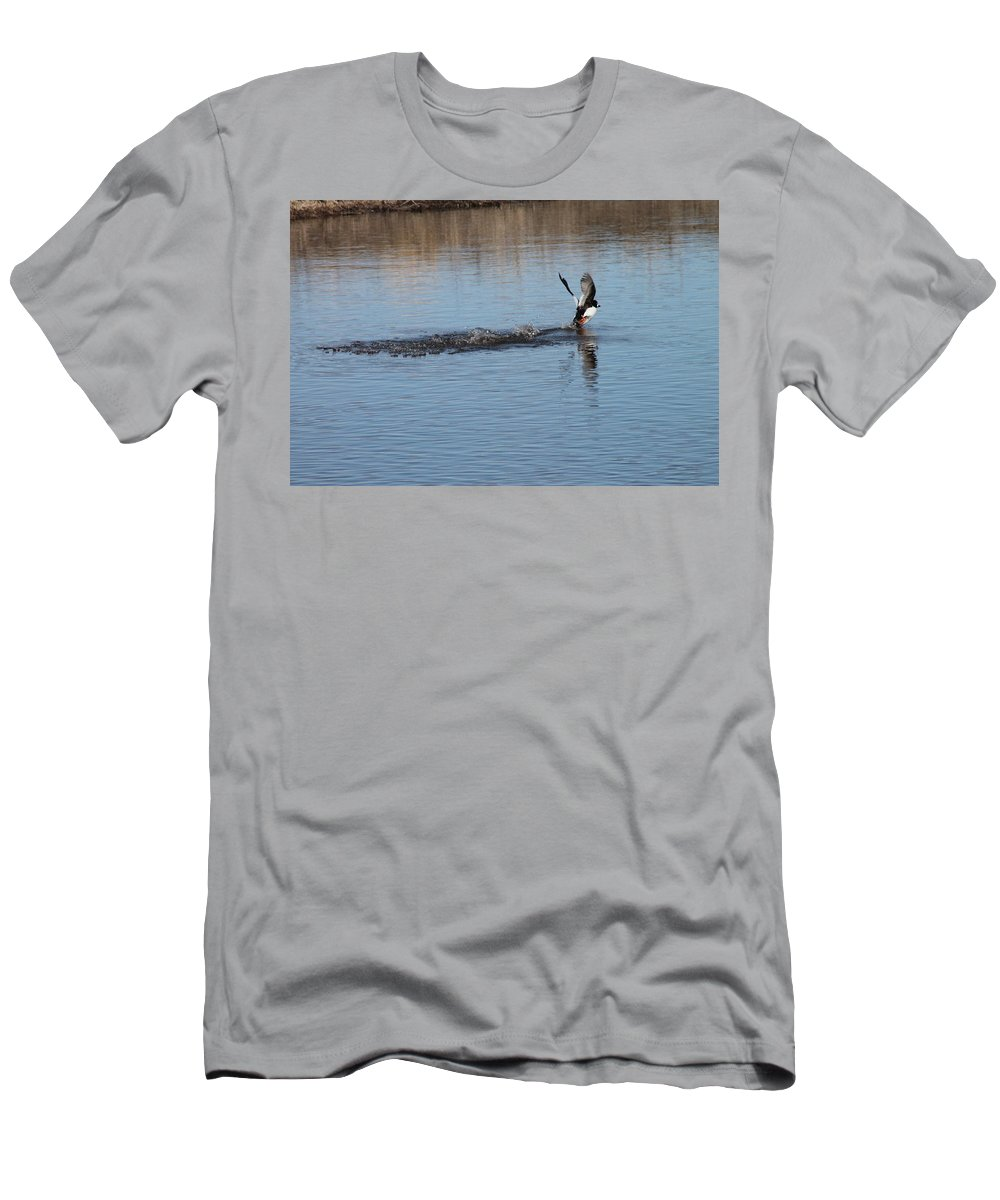 Ducks Men's T-Shirt (Athletic Fit) featuring the photograph Common Goldeneye Takeoff by Wayne Williams