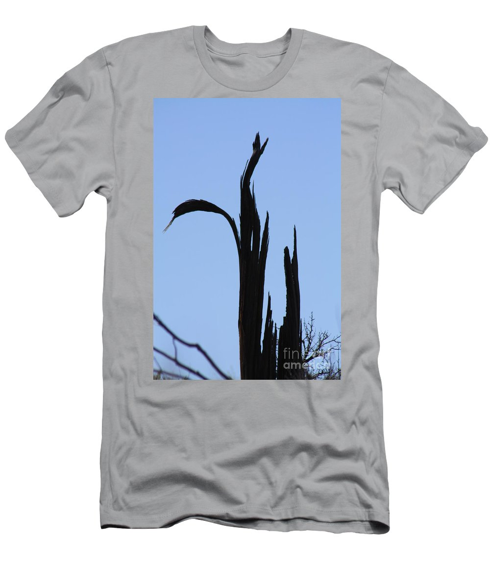 Crane Men's T-Shirt (Athletic Fit) featuring the photograph Crane Wood by Brandi Maher