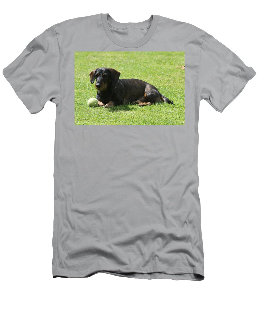 Dog Men's T-Shirt (Athletic Fit) featuring the photograph Dachshund Wants To Play by Christiane Schulze Art And Photography