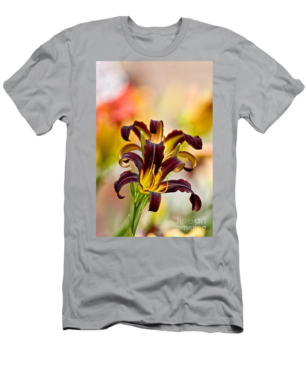 Daylily Men's T-Shirt (Athletic Fit) featuring the photograph Daylily Picture 541 by World Wildlife Photography