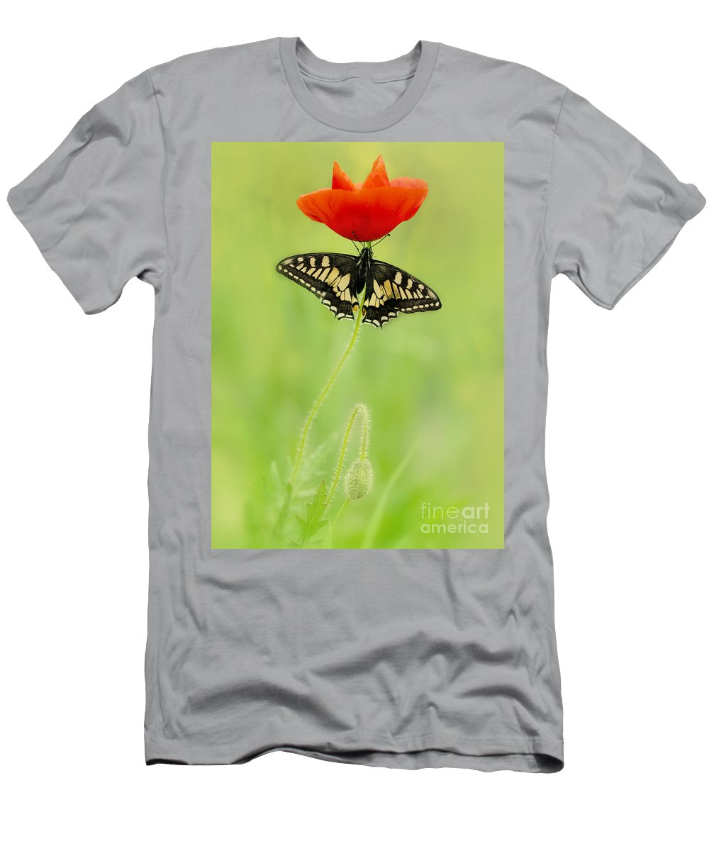 Macro Men's T-Shirt (Athletic Fit) featuring the photograph Devil And Angel by Jaroslaw Blaminsky